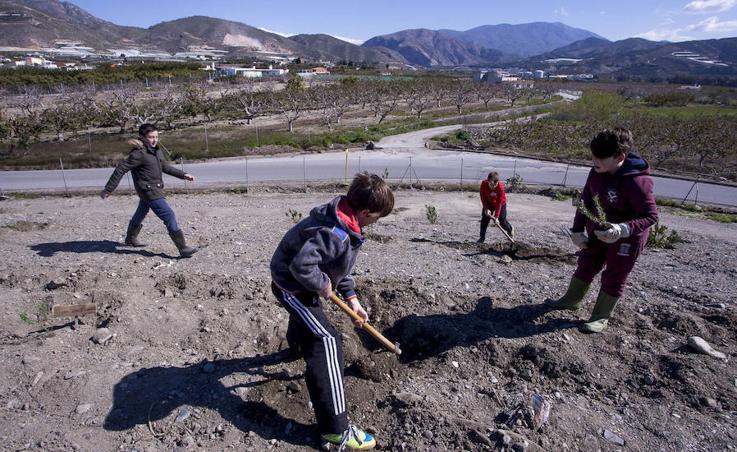 Los niños de Salobreña plantan árboles en el antiguo vertedero