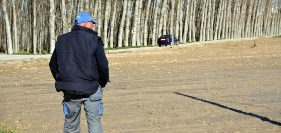 El temporal borra del mapa 30 kilómetros de caminos y afecta de lleno a 500 agricultores