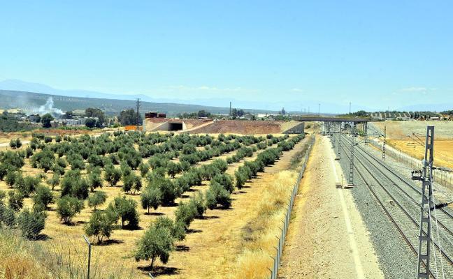 El Ayuntamiento pedirá «celeridad» en la construcción de la línea Algeciras-Bobadilla