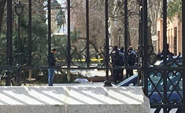 Muere un niño de 4 años en Madrid al caerle un árbol encima