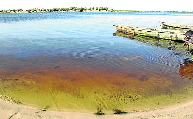 El descomunal lago que está en peligro de extinción: así buscan salvarlo