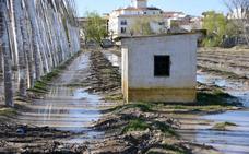 Las riadas provocan más de cinco millones de pérdidas a los agricultores de Granada