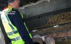 Detenido un experto delincuente que actuaba en explotaciones ganaderas de Almería y Murcia