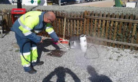 Limpian el parque de perros de Granada que se había cerrado por la procesionaria