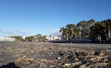 El temporal deja otros 300.000 kilos de cañaveras en las playas de Almuñécar