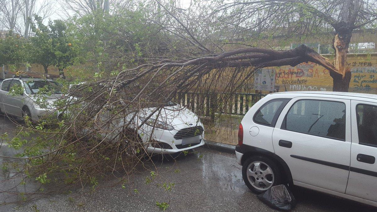 El viento y la lluvia afectan a Jaén