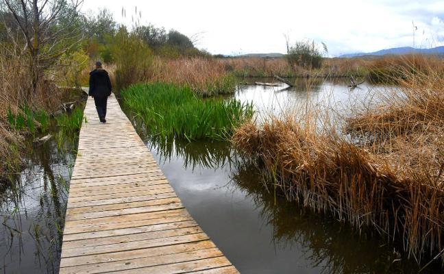 Las lluvias 'rebosan' las lagunas de Padul