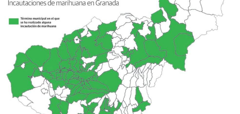 La mitad de los 172 municipios de Granada ya se han sumado a la lucrativa industria de la 'maría'