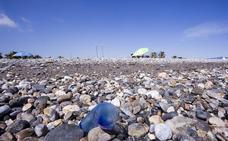 Aparecen numerosas medusas carabelas portuguesas en las playas de Motril
