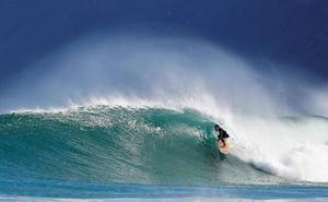 Suspendida por ataques de tiburones una prueba de la Liga Mundial de surf en Australia