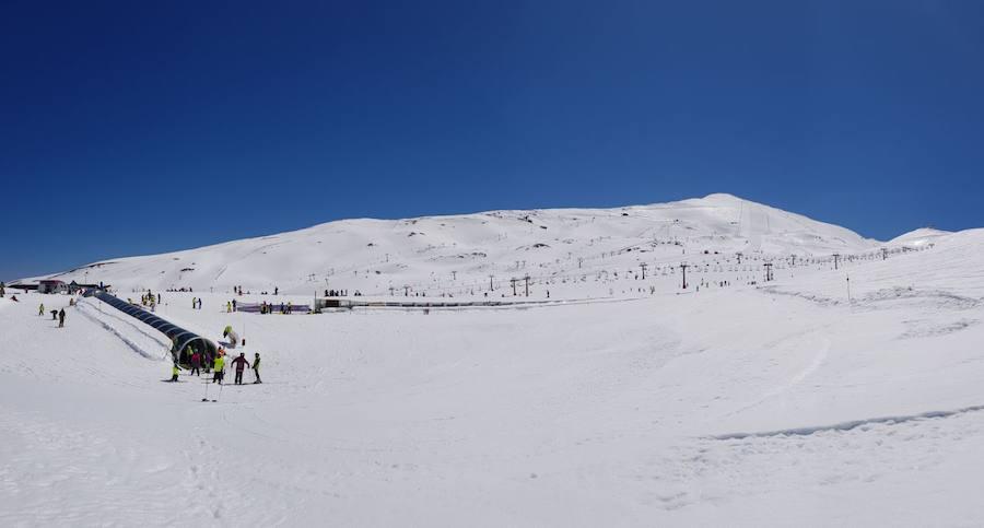 Así está Sierra Nevada en plena primavera