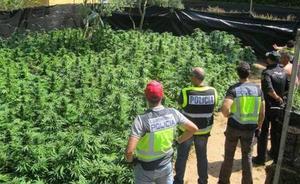 Granada, la provincia de España en la que más marihuana se incauta