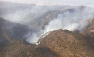 Infoca trabaja en la extinción de un incendio forestal en Felix