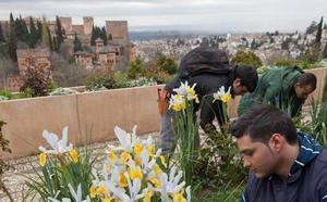 La Alhambra suma 44 nuevos puestos de trabajo para reforzar sus servicios