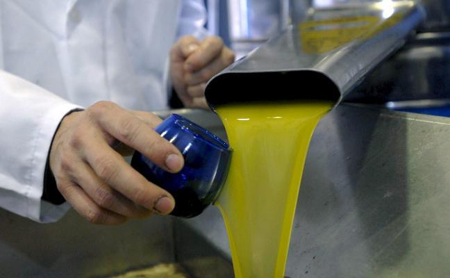 Ni el aceite virgen extra llega ya a los tres euros el kilo en origen