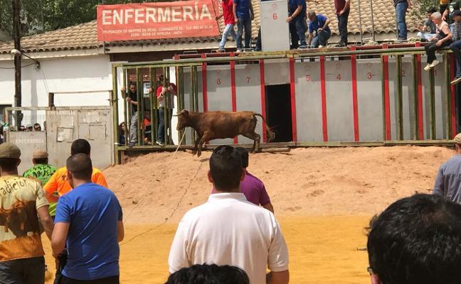 Fallece una mujer de 59 años por una cornada en la fiesta de los 'toros ensogaos' de Beas