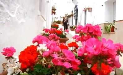 Lucainena de las Torres celebra hoy el Día de las Flores