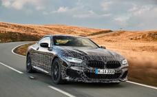 BMW Serie 8 Coupé, casi a punto