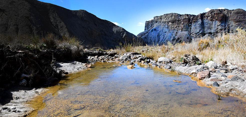 Cuando el agua mana en el desierto