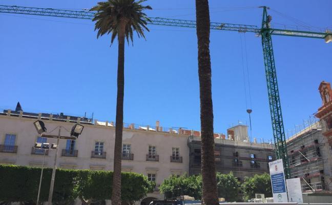 PSOE e IU exigen a Fomento que «proteja» las palmeras centenarias durante las obras