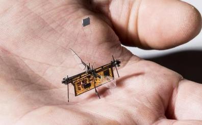 Diseñan el insecto robótico e inalámbrico que vuela