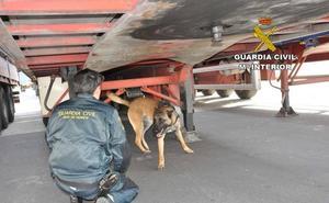 Se escondían en huecos de camiones y autobuses para entrar en el Puerto de Almería