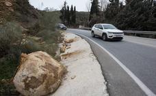 El Gobierno no mejorará la vegetación de las carreteras de Granada para luchar contra el cambio climático