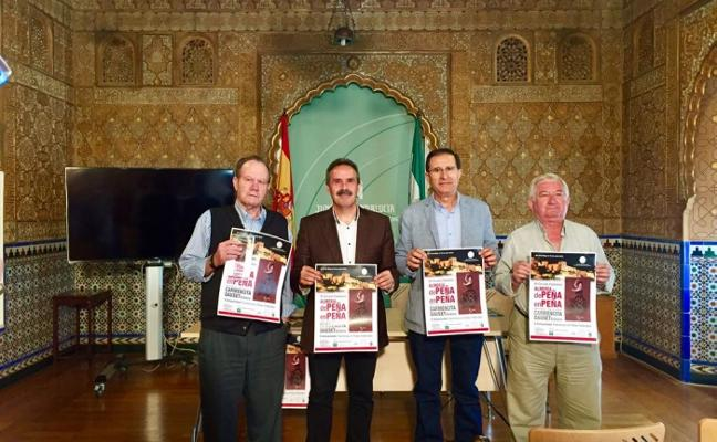 Actuaciones flamencas hasta el 16 de junio de la Junta y la Federación de Peñas