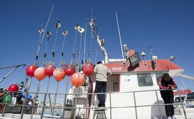 El nuevo reglamento de pesca que impulsa Europa pone en riesgo la quisquilla de Motril