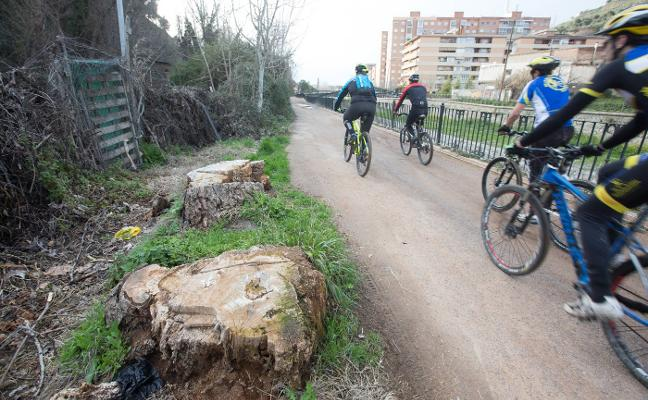 La Confederación del Guadalquivir mete la tijera en el paseo de la Fuente de la Bicha