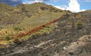 Extinguido el incendio forestal que ha calcinado 2,3 hectáreas de matorral en Tabernas