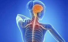 Alertan de los síntomas que avisan de la esclerosis en su Día Mundial