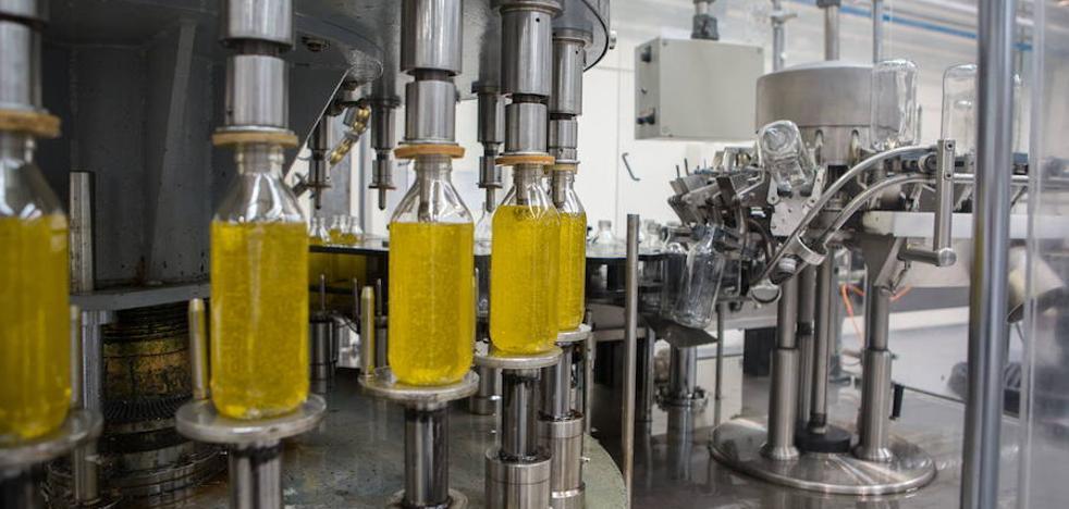 «Históricamente nunca ha bajado el aceite de oliva tanto en tan poco tiempo»