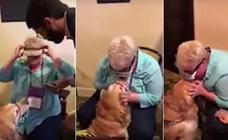 La conmovedora reacción de una mujer ciega al ver por primera vez a su perra guía tras 15 años