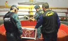 Desmantelan un reñidero clandestino de gallos en una nave industrial de Cijuela