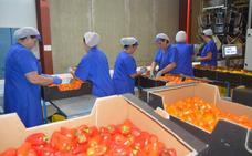 El sector agrario recibirá algo más de un millón de euros en ayudas por el veto ruso