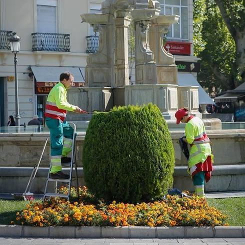 De Jardineria. Encuntranos With De Jardineria. Excellent Curso De ...