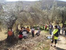 Alcolea celebra la Ruta de los Olivos este domingo