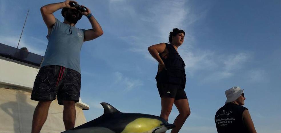 Promar declara la guerra al plástico desde la costa de Adra