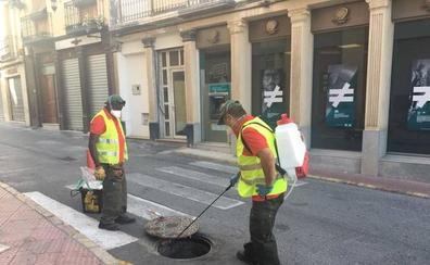 Berja aplica un tratamiento contra ratas, cucarachas e insectos en espacios públicos