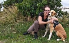 Berja se compromete con el 'sacrificio 0' de animales abandonados