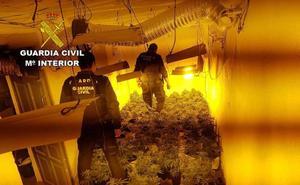 Tres detenidos en Paterna y Bayárcal por cultivar marihuana
