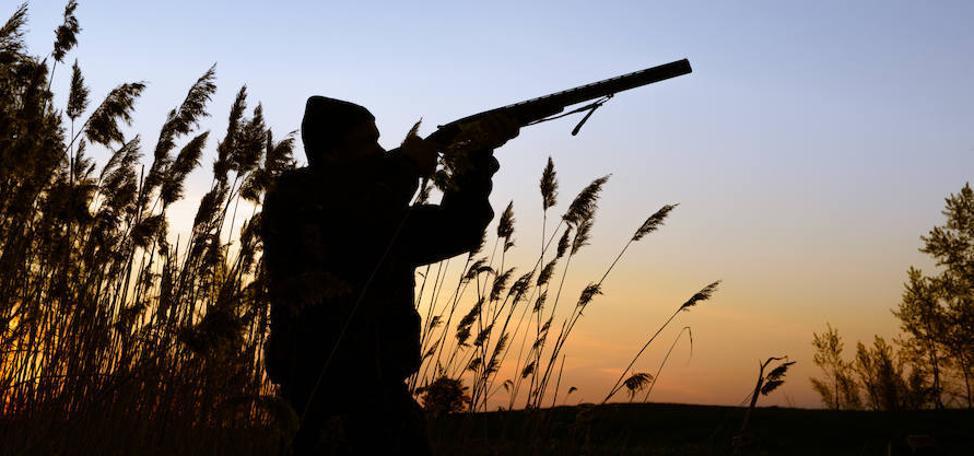 Adra respalda la caza y el silvestrismo