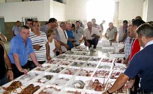 Puertos comienza en julio los trabajos para que la lonja de Adra se pueda visitar