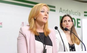 Piqueras denuncia que la deuda del Ayuntamiento con el Consorcio del Poniente roza los dos millones
