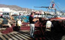 El sector pesquero y el delfín mular, un conflicto de intereses por resolver