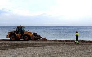 Las playas de Adra se cubren de cañas tras el temporal