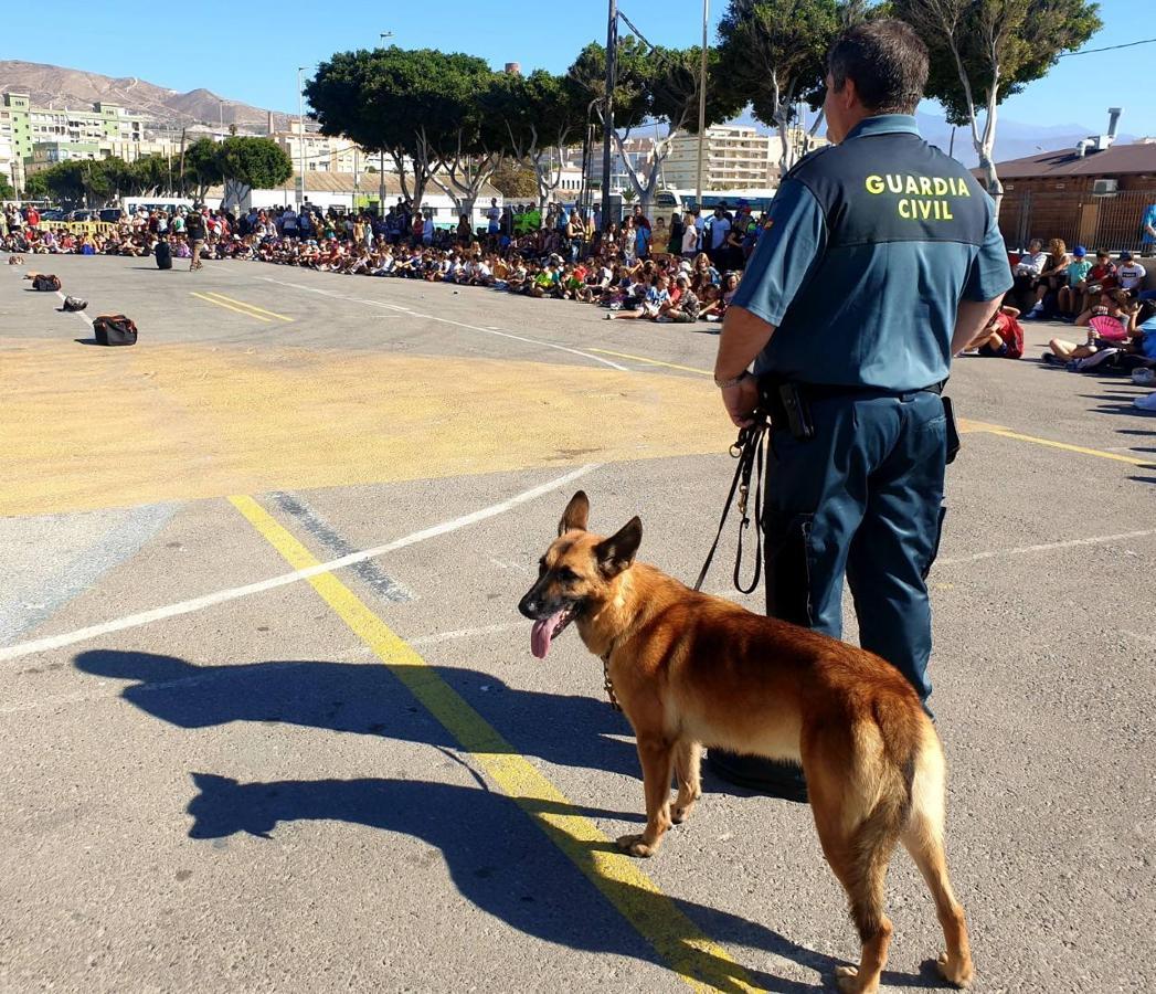 La Guardia Civil se acerca a los abderitanos