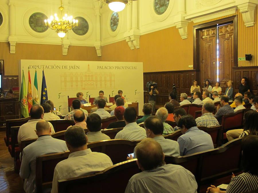 Los ayuntamientos de Jaén juntos contra la despoblación de la provincia