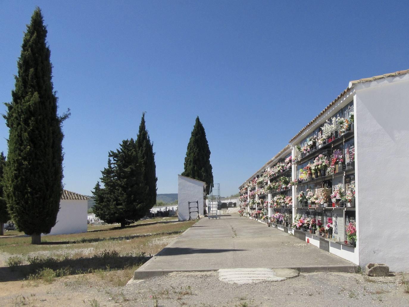 Aprobada la ampliación del cementerio de La Pedriza
